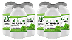 6 bottle image small - Fat Flusher Diet